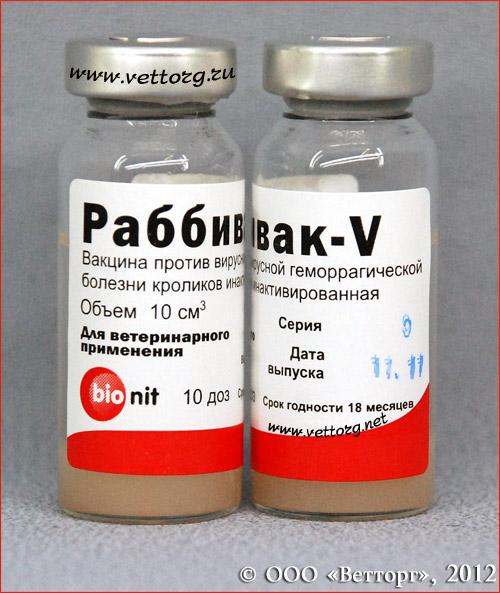 Вакцина раббивак-v инструкция